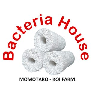 Momotaro Bacteria House Media (10 kg Box)